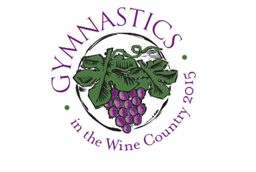 gold country gymnastics meet 2015