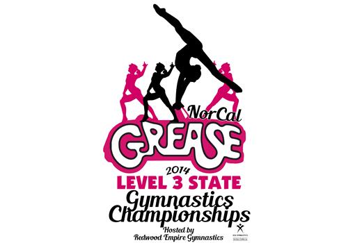level 4 state gymnastics meet illinois 2014 judges